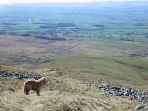 View of the Eden valley
